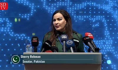 "Senator Sherry Rehman: ""India is trying to redefine the global order."""